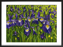 Load image into Gallery viewer, Iris landscape acrylic painting in expressive style. Bold purple, yellow, white, green with leaves and flowers. Framed in black by Judy Century Art.