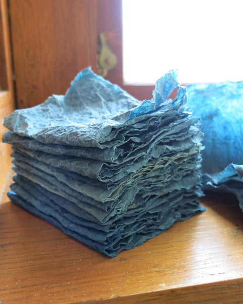 #5024 Ecoprinting and Natural Dyeing for Book Artists, with Anne Covell - June 10-11