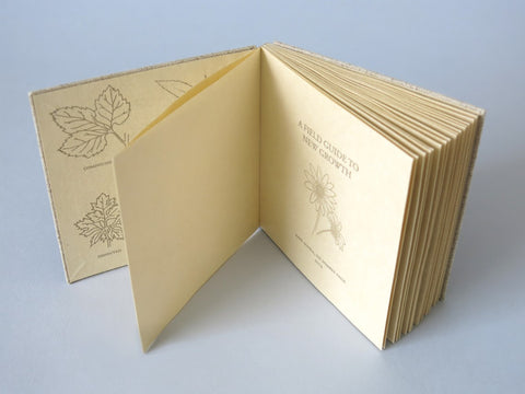 #5031 Drumleaf Binding, with Anne Covell - Sept 9