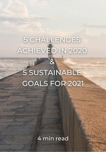 5 CHALLENGES ACHIEVED IN 2020 AND 5 SUSTAINABLE GOALS FOR 2021 BY BEFLAMBOYANT