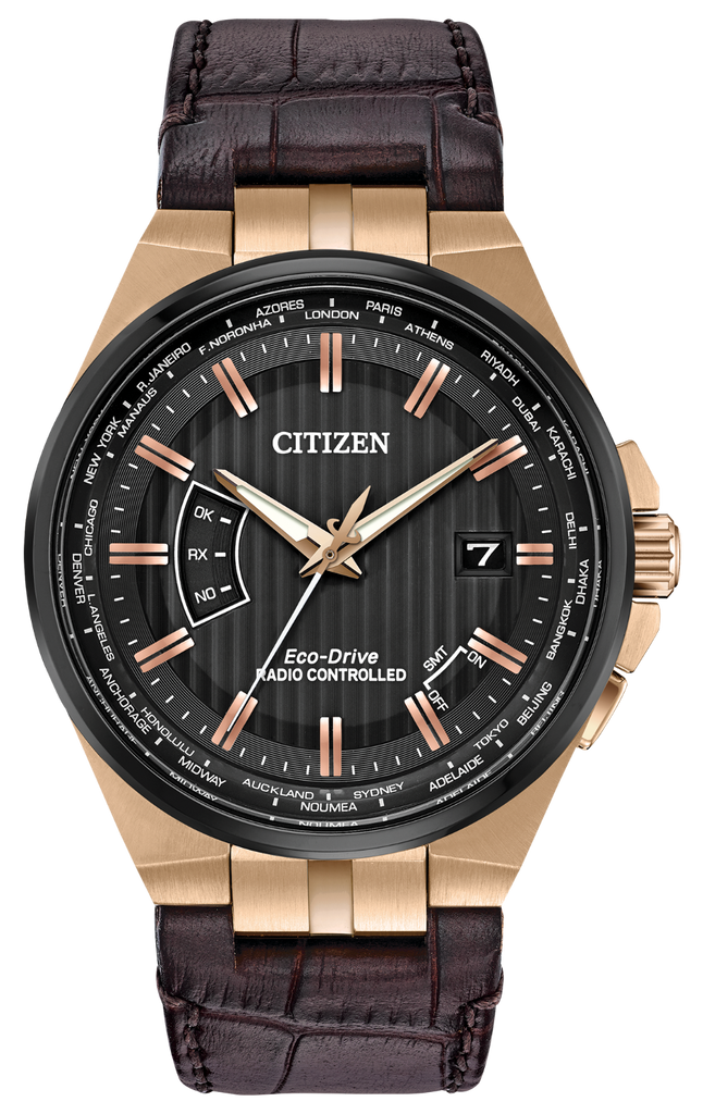 Citizen CB0168-08E Eco-Drive Leather WORLD PERPETUAL A-T Watch