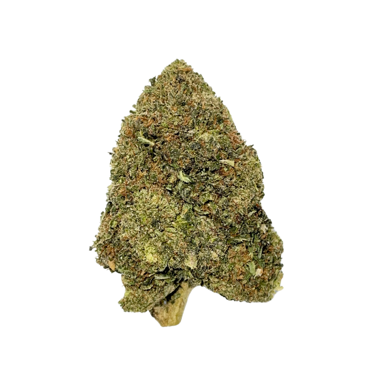 One bud of organic light assisted Delta 8 THC flower, Fortified Cookies strain by Stardust Hemp available at The Hemp Haus CBD Store and Delta 8 Store.  - thehemphaus