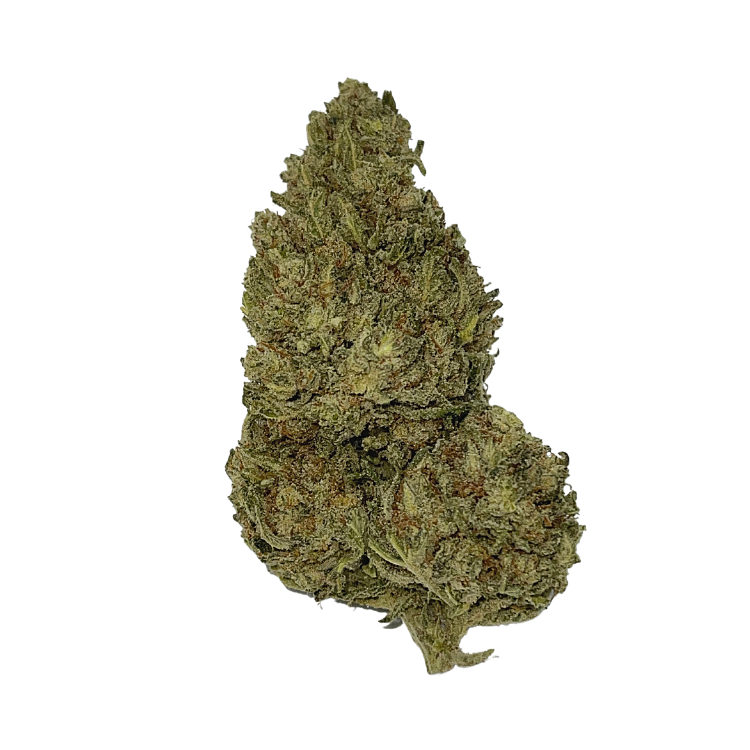 One Bud of the Delta 8 THC Flower White Widow CBG flower brought to you by Stardust Hemp sold at The Hemp Haus CBD Store Near me & Delta 8 Store Near Me.  - thehemphaus