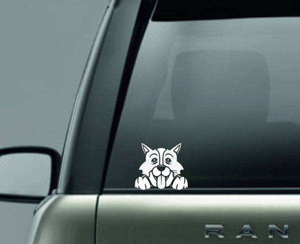 Border Collie Peek Decal
