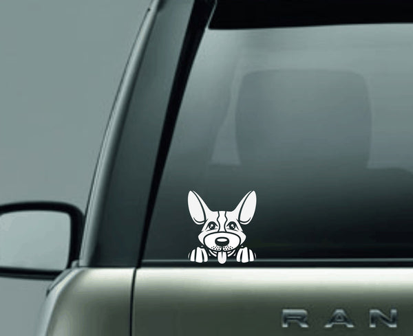 Corgie Peek Decal