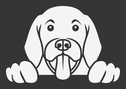 Labrador 2 Peek Decal