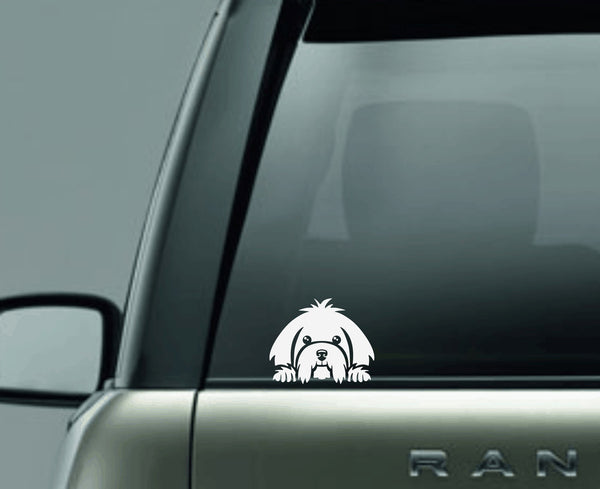 Maltese Peek Decal