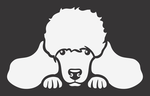 Poodle 1 Peek Decal