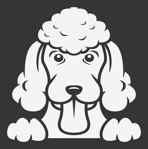 Poodle 2 Peek Decal
