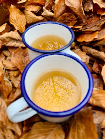 Hot Toddy Recipe Red Root & Co
