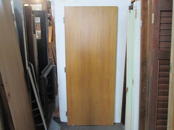 Hollow Core Door(1985H x 810W x 35D)
