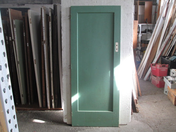 1 Panel Rimu Internal Door(2020H x 810W x 45D)