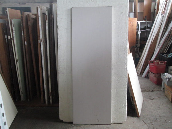 Paint Finished Hollow Core Door(1980H x 660 x 40)
