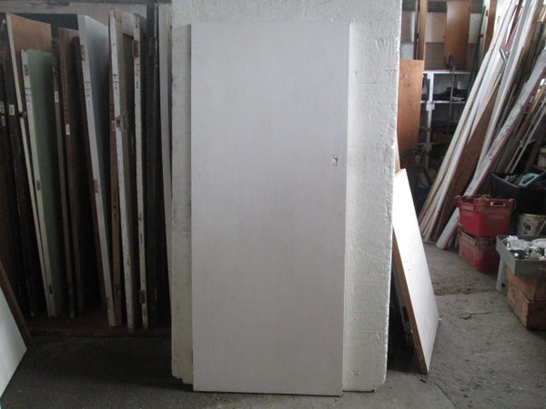 Paint Finish Hollow Core Door 1970H x 810W x 40D
