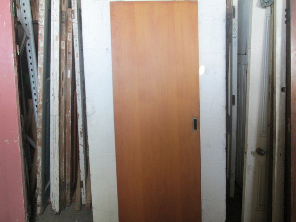 Hollow Core Sliding Door