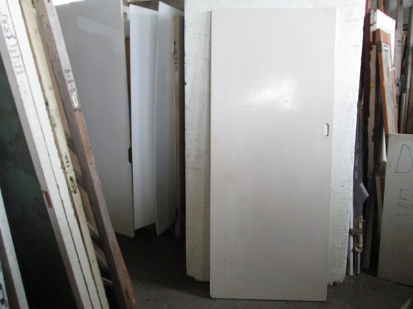 Paint Finished Hollow Core Door (Slider) 1980H x 810W x 35D