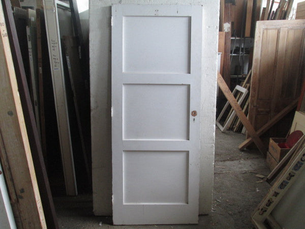 3 Panel Internal Door (2020H x 810W)