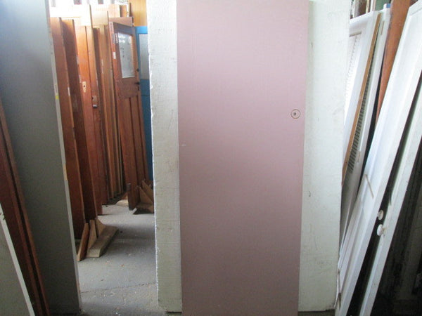 Paint Finish Hollow Core Door