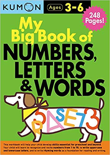 MY BIG BOOK OF NUMBERS, LETTERS AND WORDS