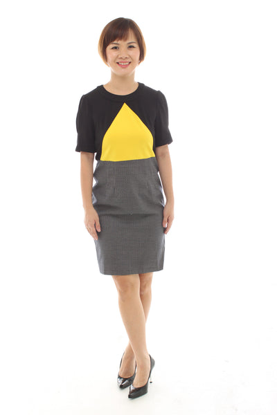 Colour Block Skirt Dress