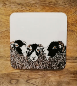Michael Joseph George Coaster