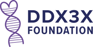 DDX3X Foundation