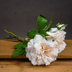 Peachy Cream Short Stem Rose Bouquet - The Tulip Tree Chiddingstone