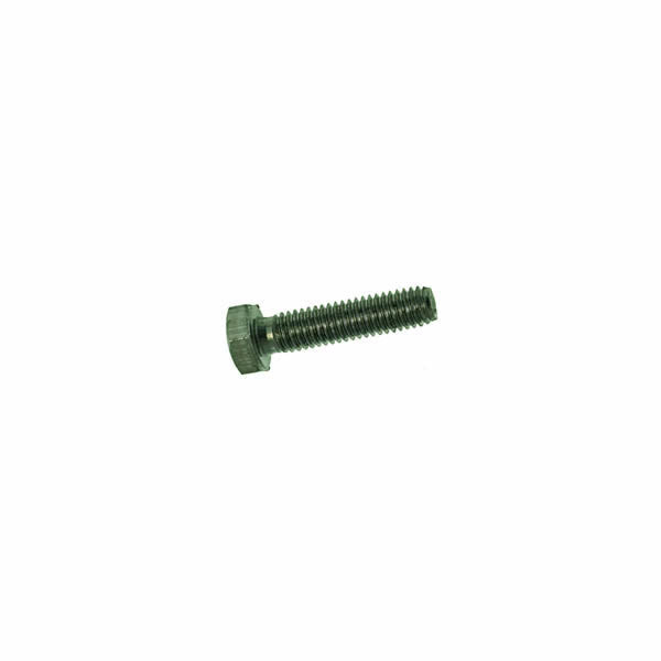 Rancilio LE Lever Group Head Screw