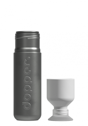 Load image into Gallery viewer, Steel Flask 490 ml