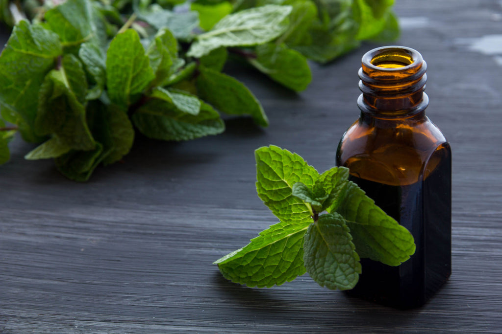 8 Medicinal Essential Oils to Keep On Hand