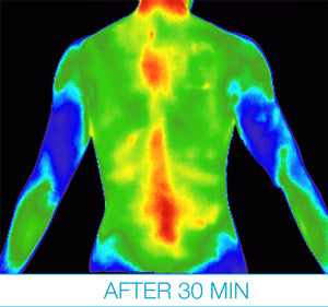 thermography testing