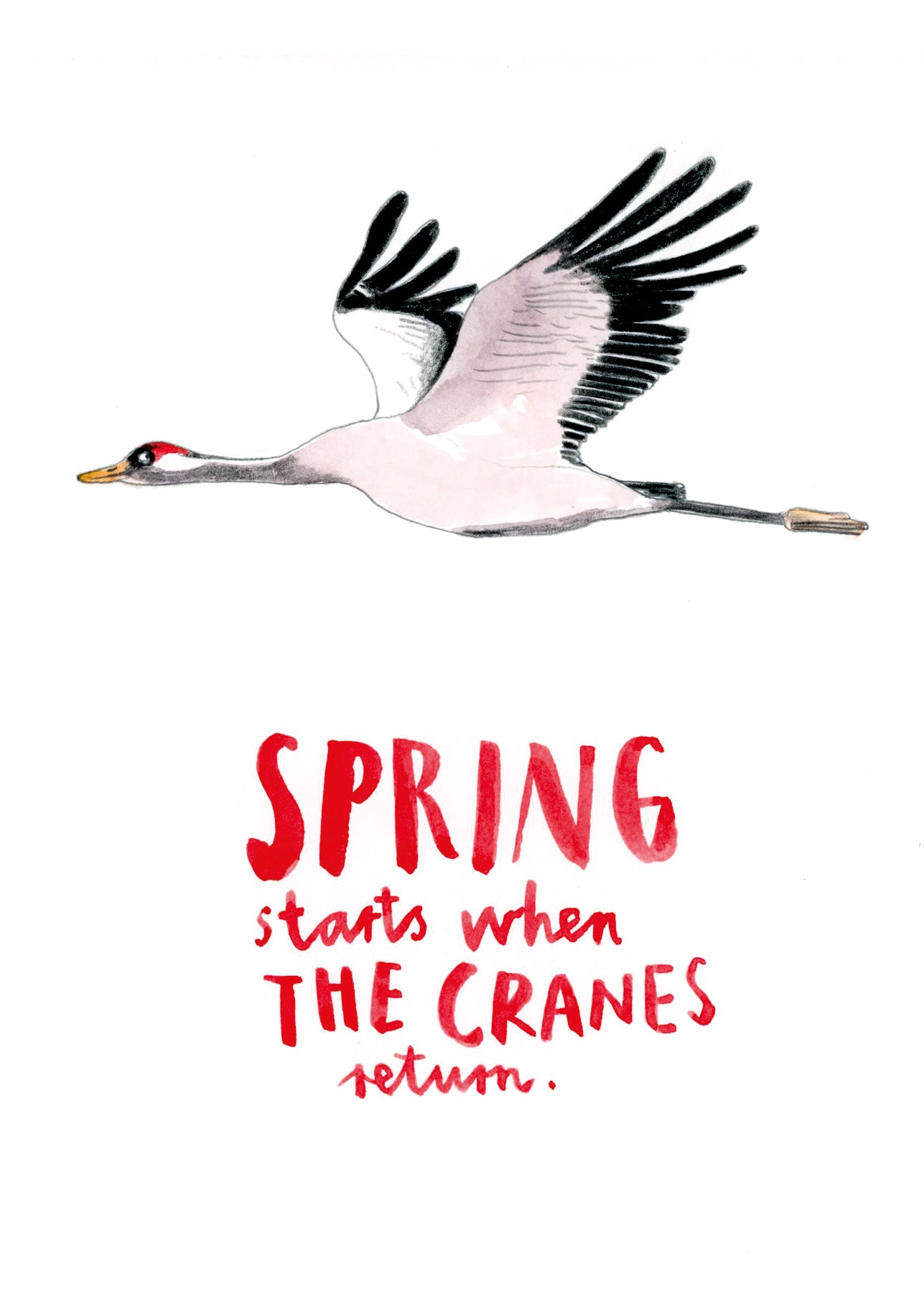Spring starts when the cranes return