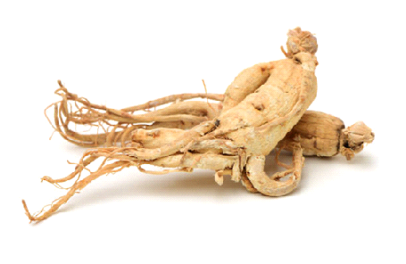 Benefits of taking Siberian Ginseng