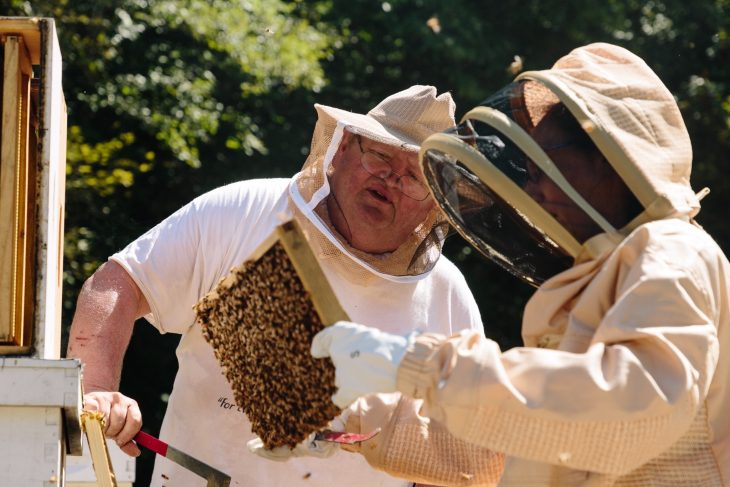 Veterans use beekeeping to improve well being