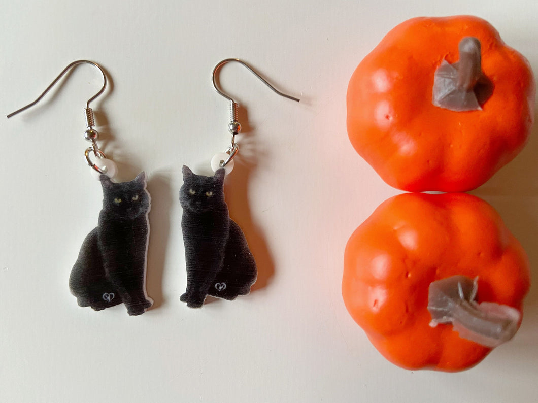 Black Cat Earrings: Halloween, Scary, Horror, Spooky, Animals