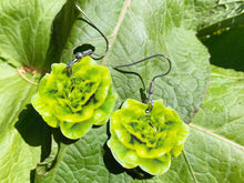 Load image into Gallery viewer, Lettuce Earrings: Food, Salad, Plant, Farm, Gardening, Vegetables