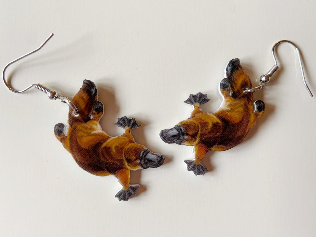Platypus Earrings: Animals, Zoology