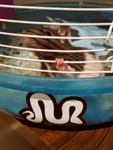 Load image into Gallery viewer, M sticker on rat cage with rat peering through bars