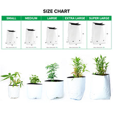 Load image into Gallery viewer, Rochfern Grow Bag size chart