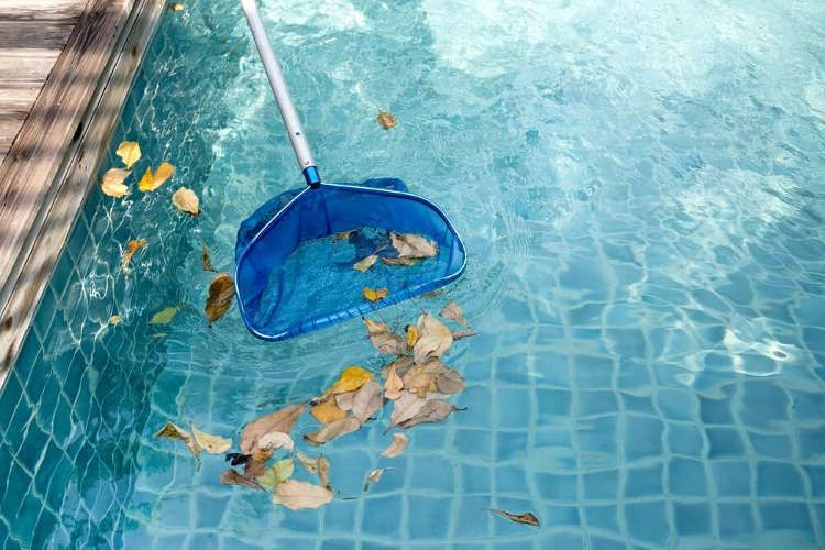 Get rid of leaves in the swimming pool forever!