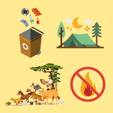 Help the environment when camping