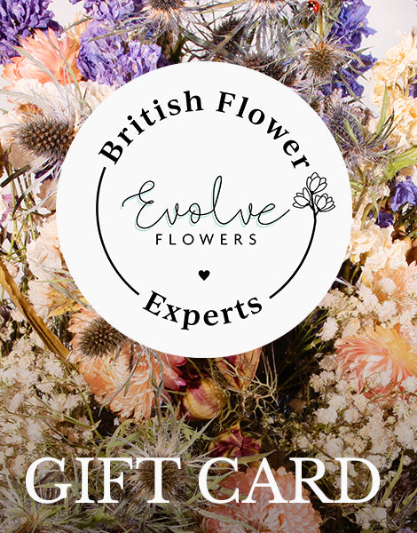 Evolve Flowers Gift Card