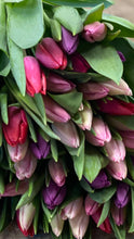 Load image into Gallery viewer, Tulipmania