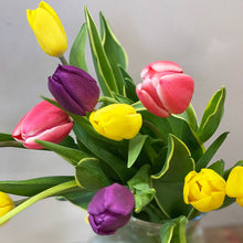 Load image into Gallery viewer, Bundle of Bunches - 40 x Rainbow Tulips
