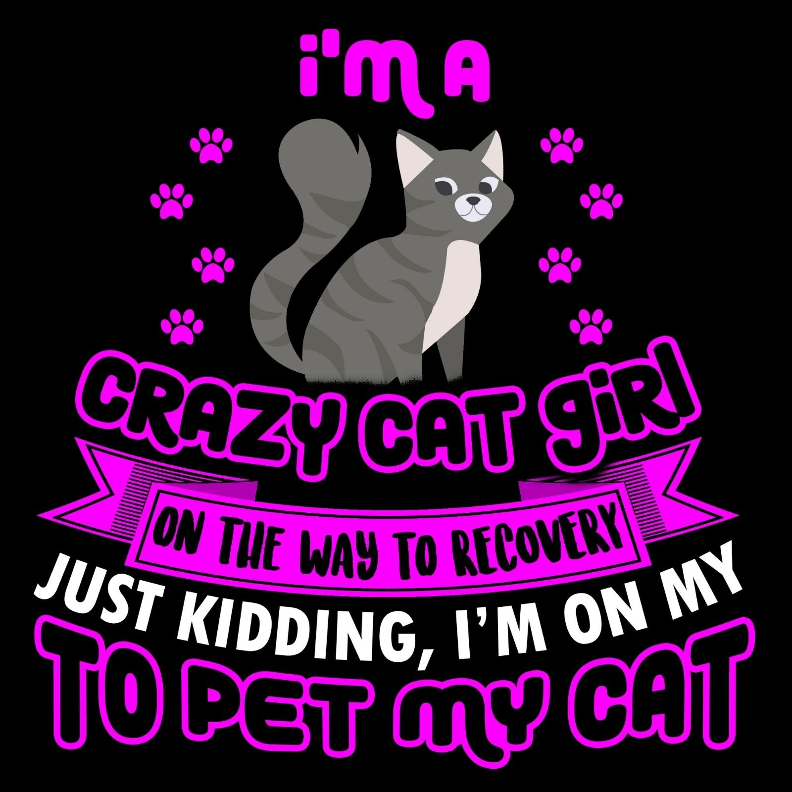 I'm A Crazy Cat Girl On The Way To Recovery Just Kidding I'm On My Way To Pet My Cat - Bastard Graphics