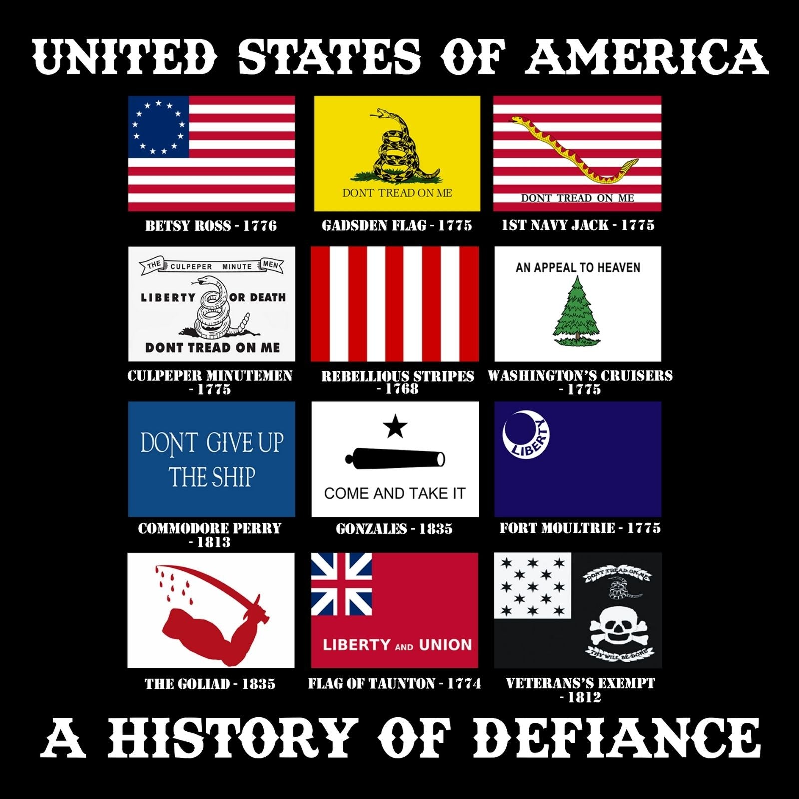 United States Of America A History Of Defiance - Bastard Graphics