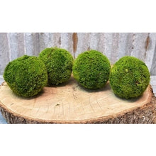 "Load image into Gallery viewer, Forever Green Art 5"" Moss Ball"