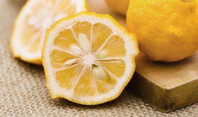 closeup of sliced lemon