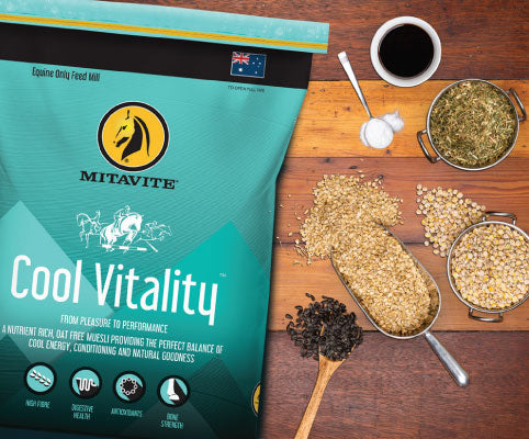 Cool Vitality lifestyle horse feed