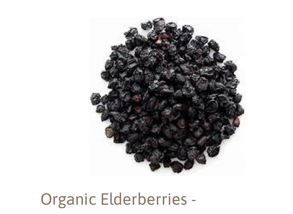 Organic Black Elderberry